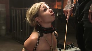 Bound tow-haired sub in lingerie whipped